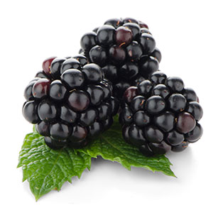 Home_Black-Raspberry