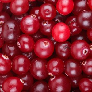 Cranberry_300x300